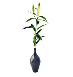 Soliflore Design Vase