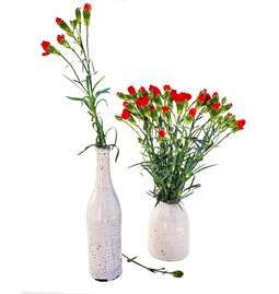 Soliflore Bottle Vase