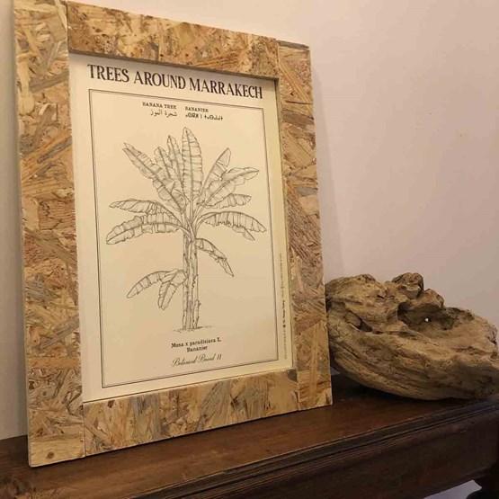 Planche botanique BANANIER - Design : THE VINTAGE FACTORY