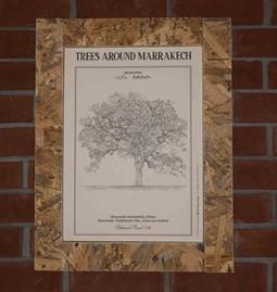 Botanical board JACARANDA